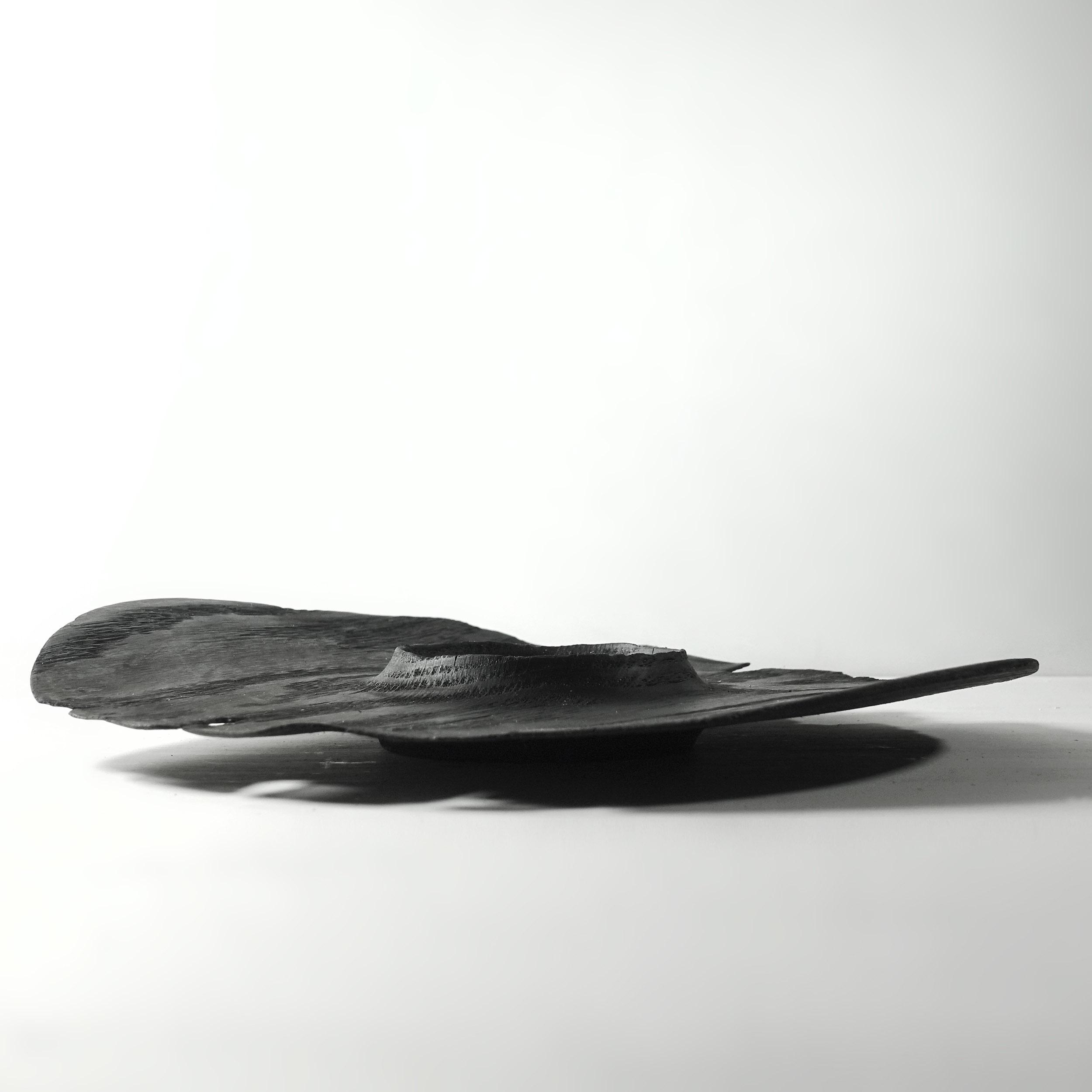 Burned platter / Plat brûlé